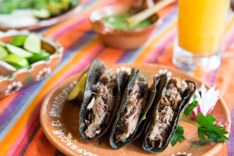 Habitat Expo 5 Best Restaurants in Mexico City! 2