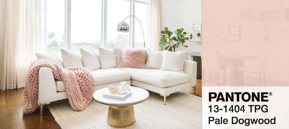 Mood Board- How to Have a Pastel Home Decor with Pale Dogwood