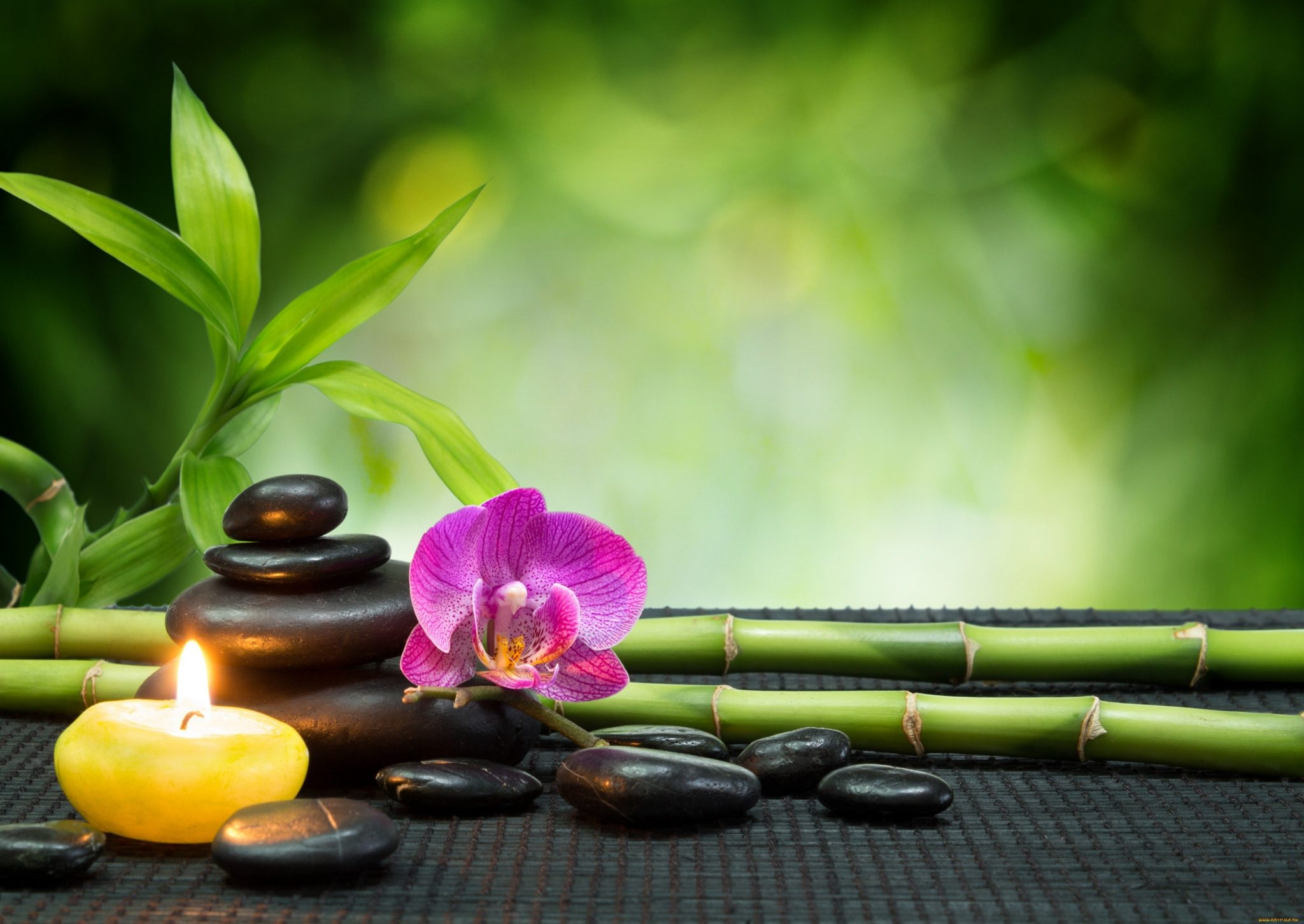 Feng Shui What You Should And Shouldn't Have In Your House 9