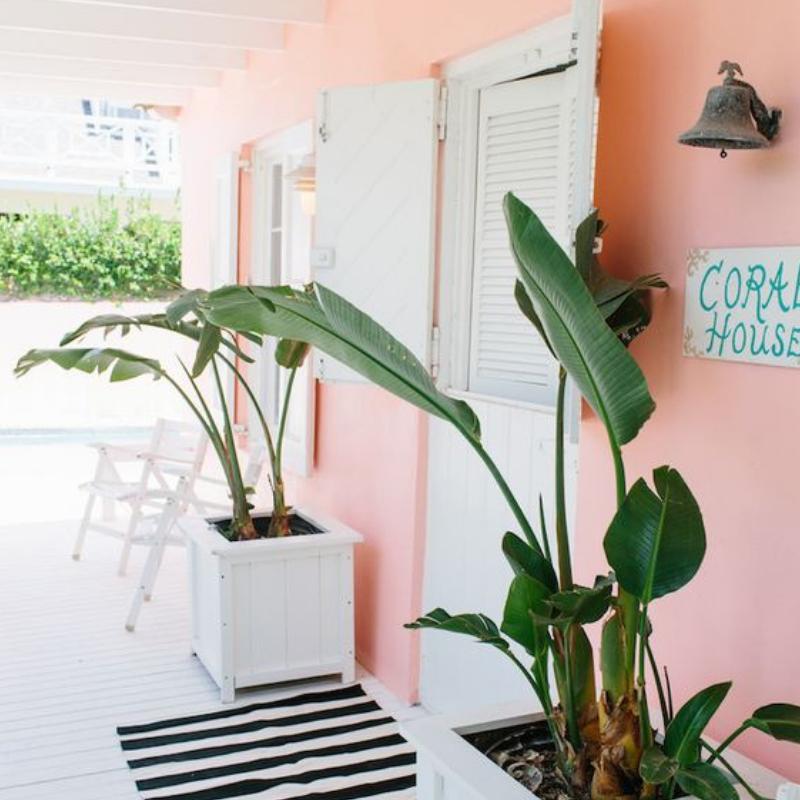 Pantone Color Del Año 2019_ Coral Va Rellenar El Design de Tu Casa (3)