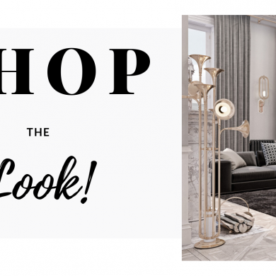 Shop The Look_ Luxurious Parisienne Apartment!