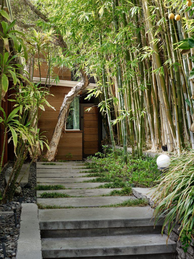 Get Inside: Dakota Johnson Found Her Mid Century Dream House 🏠